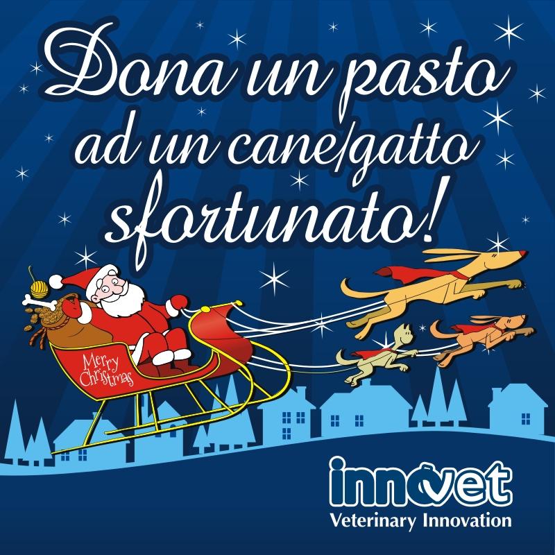 Immagini Dopo Natale.A Natale Innovet Aiuta Gli Animali Sfortunati