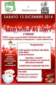 Un Natale soprendente con Varese Dog's City Park!