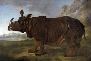 Clara ritratta da Oudry