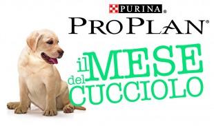 """IV Edizione de """"Il Mese del Cucciolo Purina PRO PLAN®"""""""