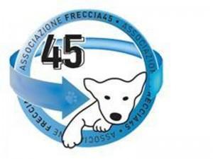 LIBERATI OGGI, 34 ANIMALI DA VIVISEZIONE