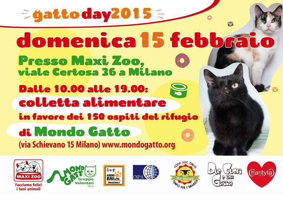 Gattoday2015 Vs Mondo Gatto Onlus