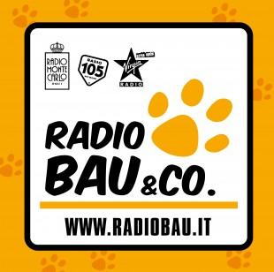 Notizie BAU: ogni punto ora su Radiobau&CO… naturalmente!