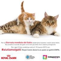 #aiutiamoigatti con Royal Canin
