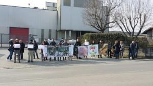 Pulcini vivi pestati come uva: protesta animalista per non dimenticare