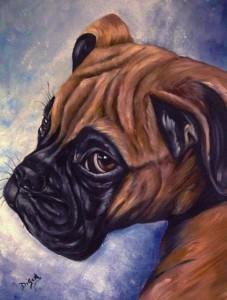 Vita da Cani onlus