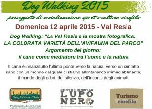 Domenica 12 aprile: Dog Walking in Val Resia