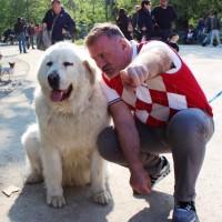 Chi vuoi salvare:  il tuo caro o il tuo cane