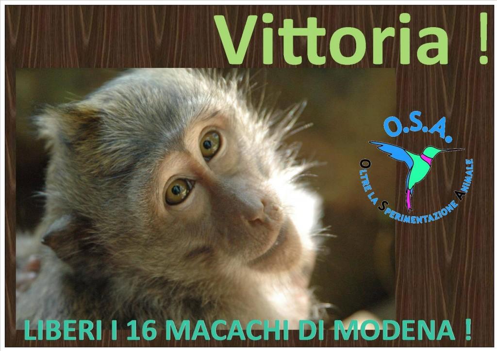 i Macachi di Modena Ringraziano!