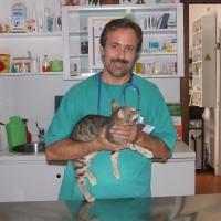Diego Manca il nostro Dr. Doolittle