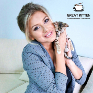 "GREAT KITTEN: Gatti ""al Cinema"" che cercano casa"