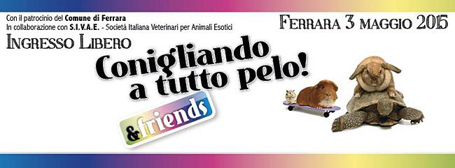 3 Maggio 2015 a Ferrara …CONIGLIANDO A TUTTO PELO!