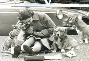 Playing with her corgis at the Royal Windsor Horse Show in 1973.
