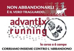 A Milano il 17 Maggio torna Advantix Running, corriamo contro l'abbandono dei cani!!!