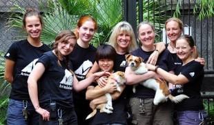 … da Jill Robinson l'aggiornamento relativo al Festival di Yulin