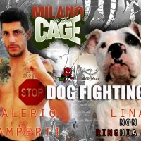 DOGS OUT OF THE CAGE… Contro i Combattimenti fra Cani!
