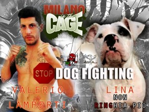 Dogs out of the cage
