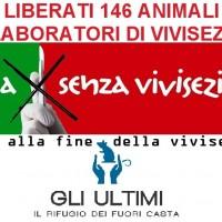 LIBERATI 146 ANIMALI DAI LABORATORI DI VIVISEZIONE