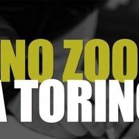 No ZOO a Torino