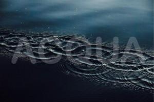 Misteri Bestiali acqua