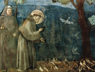 San Francesco: il Santo Animalista
