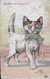 Il copyright di questa immagine appartiene a Cats Museum di Cattaro (CMC)