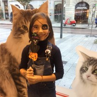 Royal Canin World –  Temporary Store, un mese di incontri e tanti BAU!