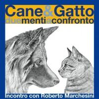 Cane&Gatto – Due menti a confronto a Bologna