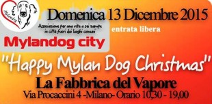 13 Dicembre – Happy Mylandog Christmas