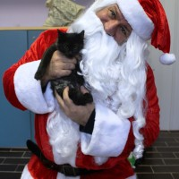 Babbo Natale RadioBau