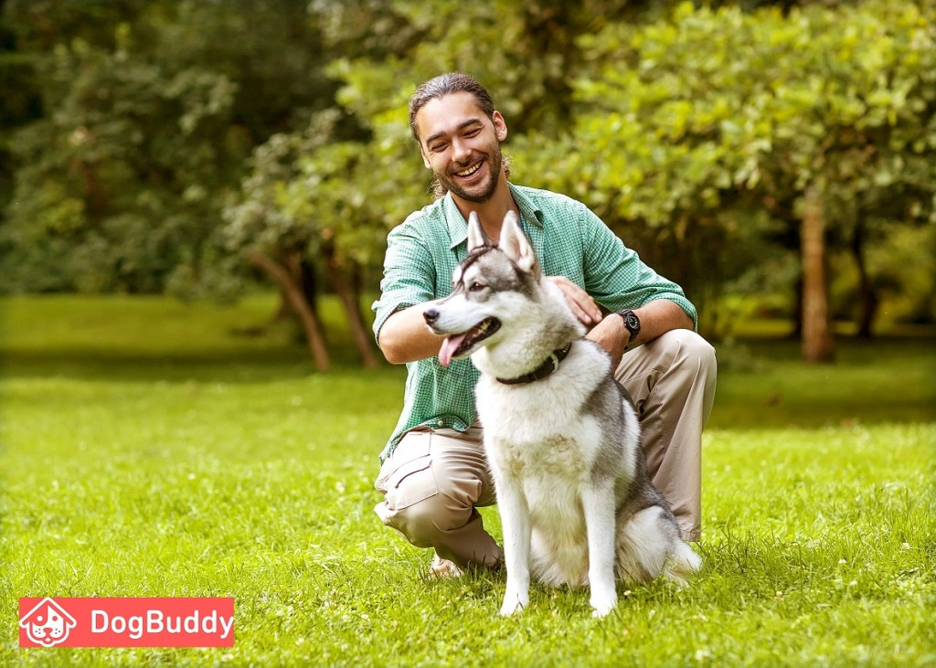 Man with husky in park DogBuddy