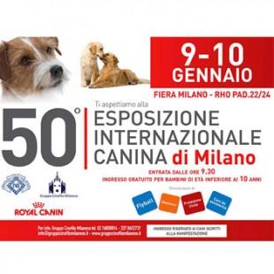 A Milano arriva: la 50° Esposizione Internazionale Canina