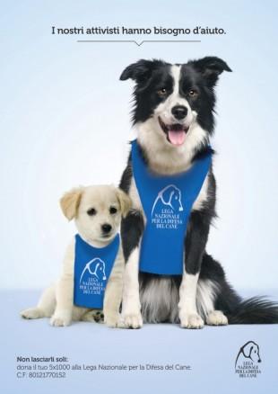 #gliattivistihannobisognodite – Dona il 5 X 1000 alla Lega Nazionale per la Difesa del Cane