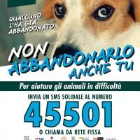 ANIMALI, L'SMS CHE SALVA LA VITA: L'ON. BRAMBILLA PRESENTA LA CAMPAGNA CONTRO L'ABBANDONO E IL RANDAGISMO DELLA LEGA ITALIANA DIFESA ANIMALI E AMBIENTE