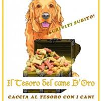 A VARESE: IL TESORO DEL CANE D'ORO