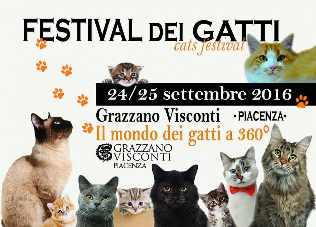 A Settembre Arriva… Il Festival dei Gatti