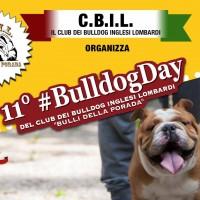 Locandina 11° _BulldogDay a Bergamo - Copia