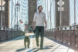 Un altro cane per Keanu Reeves in  JOHN WICK 2