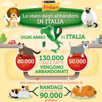 Infografica food raising - Copia (2)