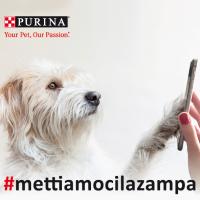 _mettiamocilazampa