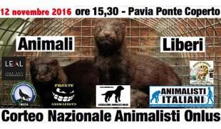 CHIUDIAMO GLI ALLEVAMENTI DEGLI ANIMALI DA PELLICCIA IN ITALIA
