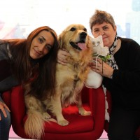 Pet Therapy all'Ospedale Mondino di Pavia