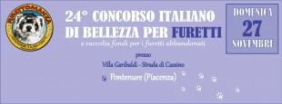 24°Concorso Italiano di Bellezza per Furetti
