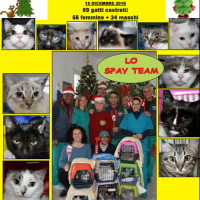 SPAY DAY NATALIZIA 2016 di Lega Pro Animale