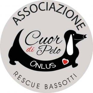 Cuor di Pelo, Tutti pazzi per i Bassotti!!!