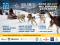 DOLOMITI WINTER FEST 2017