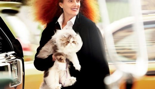 Grace Coddington ed i Gatti