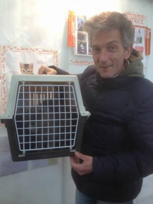 AMATRICE: Sina,  la Micia terremotata ritrova la famiglia dopo 6 mesi!!!