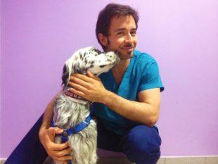 AURONCOVET: Il progetto per la cura dei tumori per cani e gatti