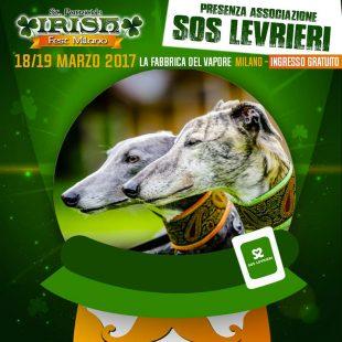 IRISH FEST ed SOS LEVRIERI per due giorni di Festa e di Sensibilizzazione